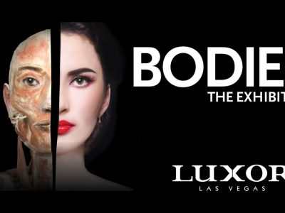 bodies-the-exhibition-discount-luxor-las-vegas