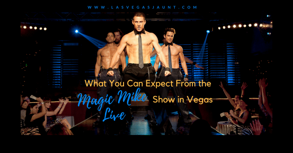 What You Can Expect From the Magic Mike Live Show in Vegas