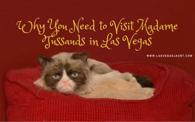 Madame Tussauds Las Vegas Grumpy Cat