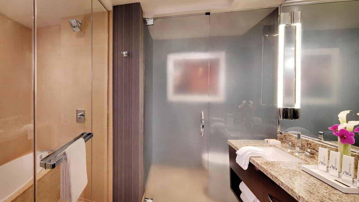 Aria Las Vegas Deluxe Room Bathroom
