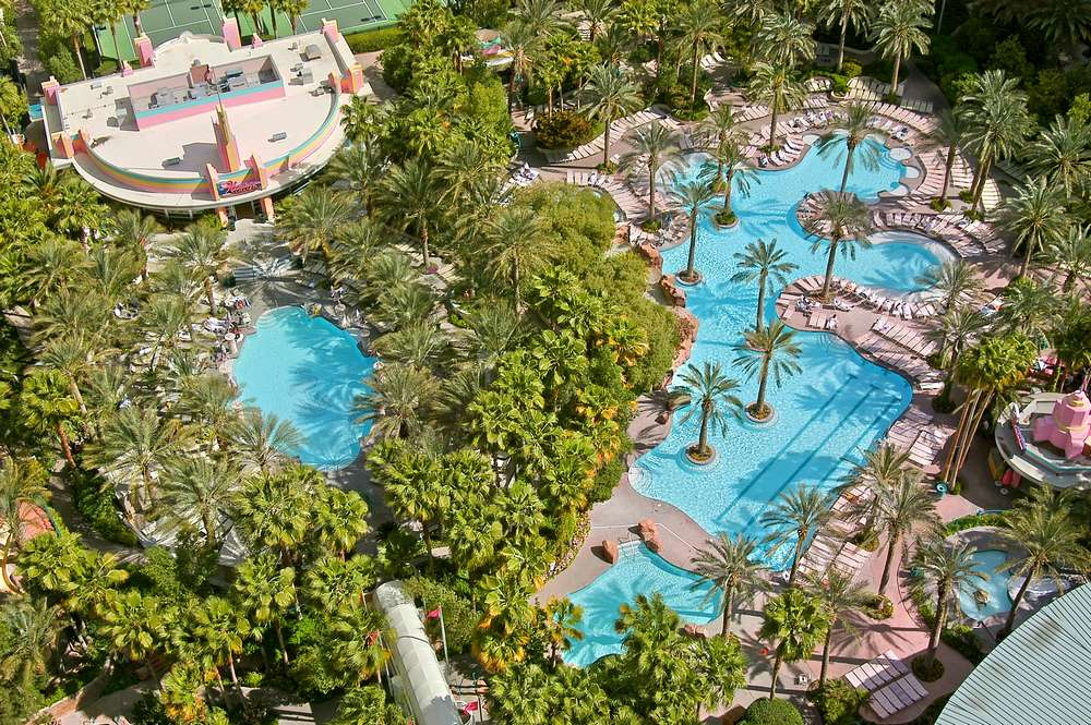 Flamingo Las Vegas Go Pool Overview