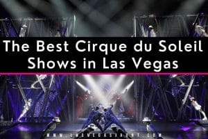 The Best Cirque du Soleil Shows in Las Vegas